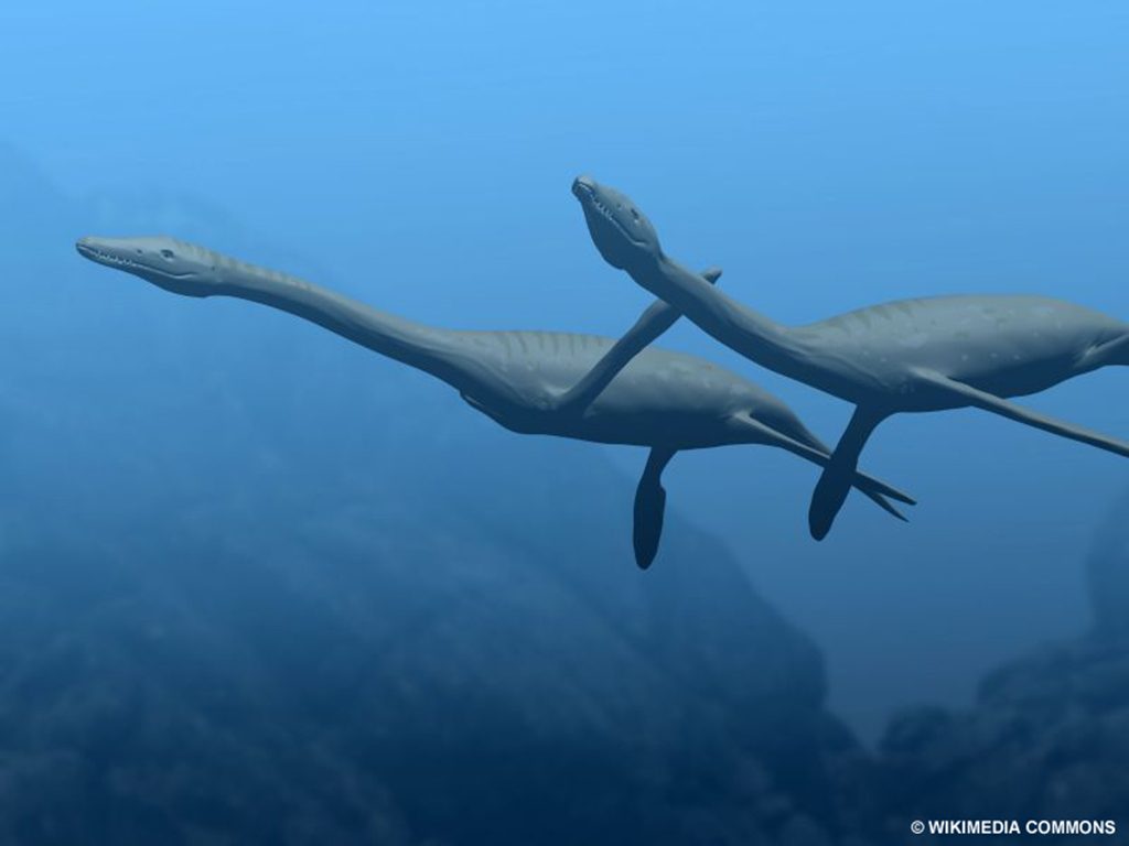 Plesiosaurus was a genus of fish-eating marine reptiles that lived during the early Jurassic period