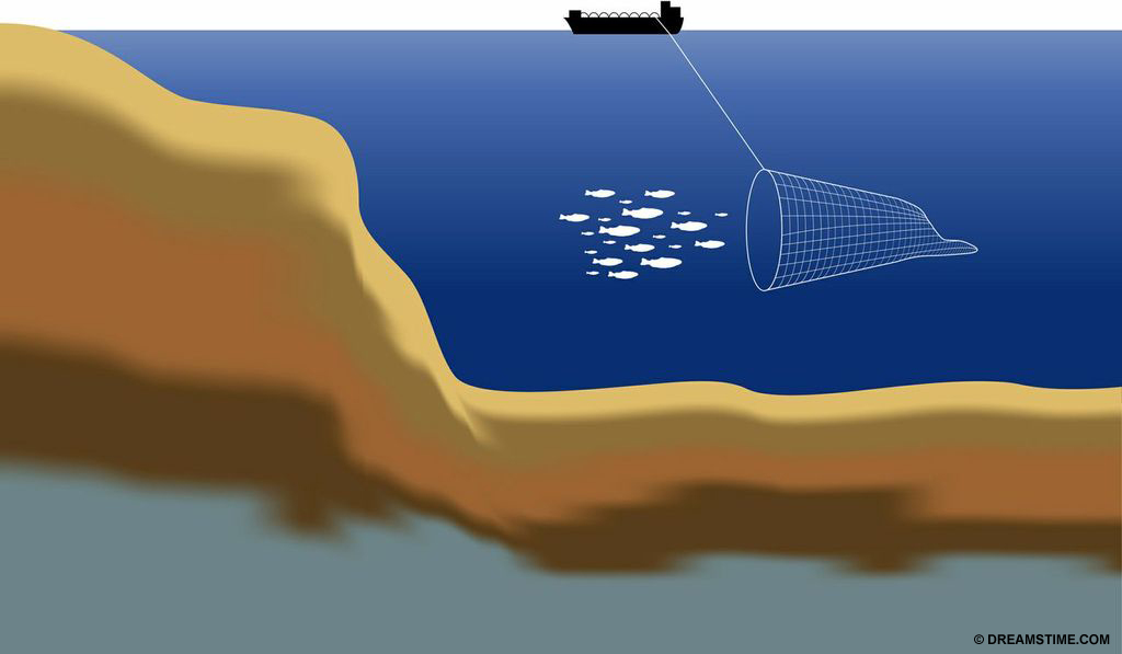 Destructive bottom trawl net in action