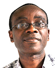 Nnimmo Bassey, Executive Director, Environmental Rights Action