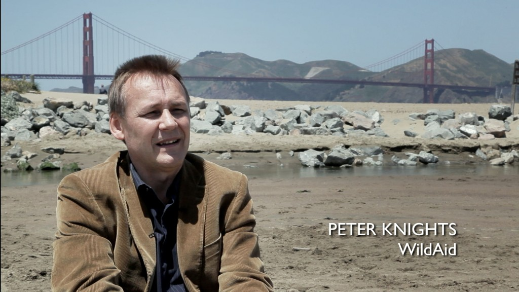 Peter Knights