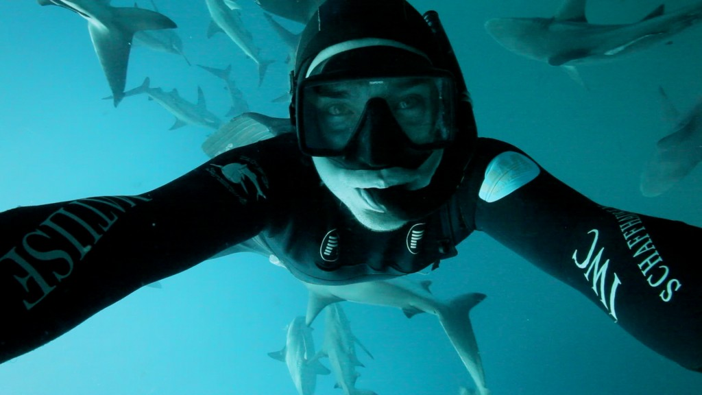 Filming black tip sharks in South Africa.